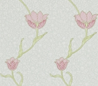 archive-tulip-210394
