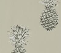 artgarden-pineapple-216323