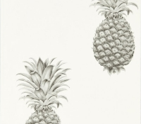 artgarden-pineapple-216324