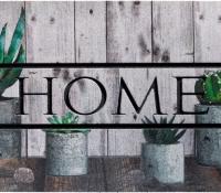 zerbini_eco_master_home_cactus