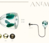anemon10077